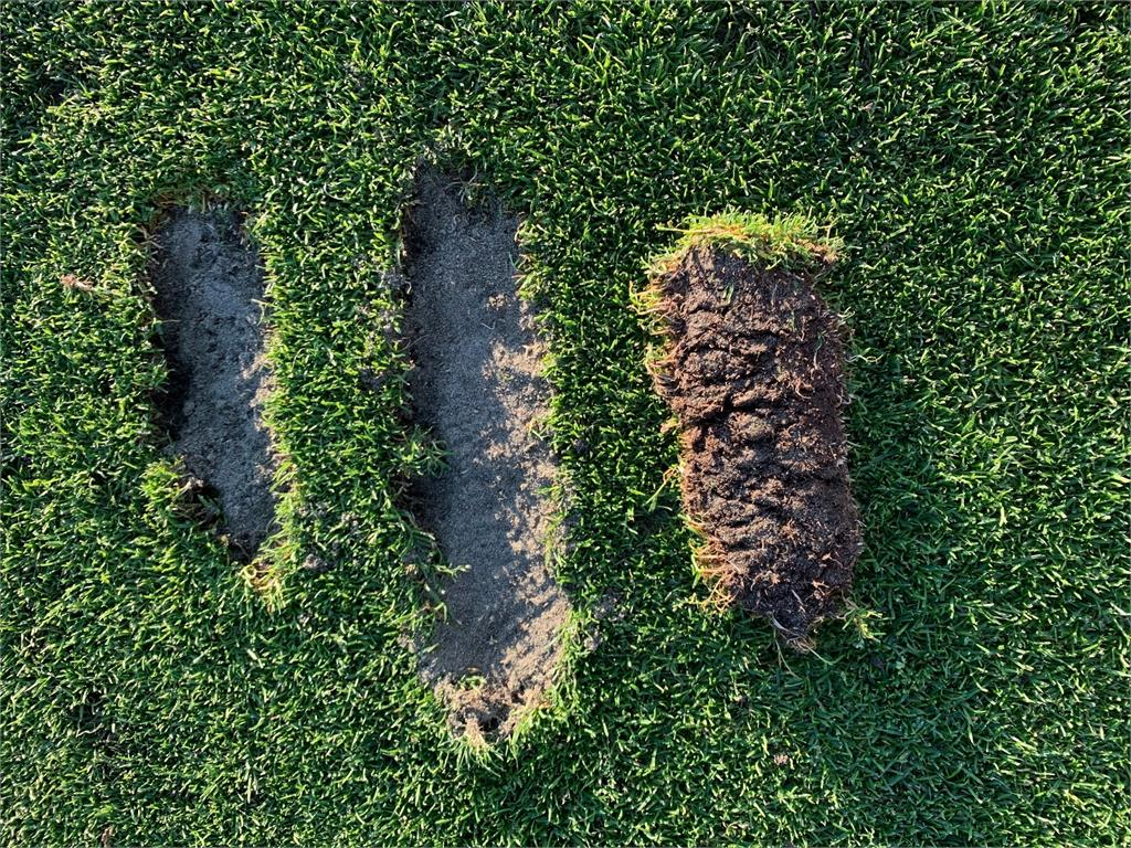 Divot Close Up.jpg